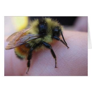 Bienenanmerkungskarte Karte