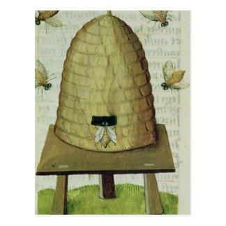 Bienenstock und Bienen Postkarte