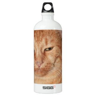 big-88074.jpg wasserflasche