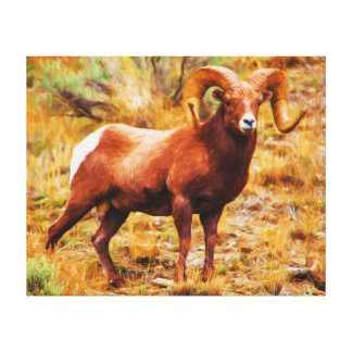 Big Horn-RAM Leinwanddruck