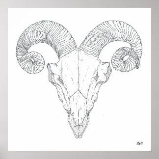 Bighorn-Schaf-Druck (groß) Poster