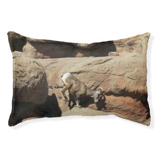 Bighorn-Schafe Haustierbett