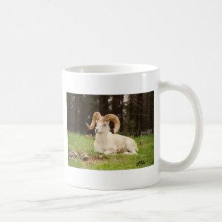 Bighorn-Schafe Kaffeetasse