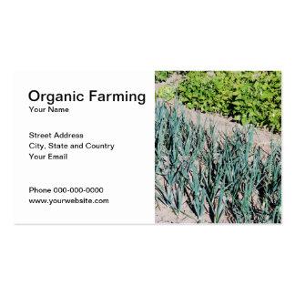 Bio Landwirtschafts-Geschäfts-Karte Visitenkarten