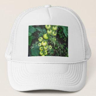Bio Tomaten Truckerkappe
