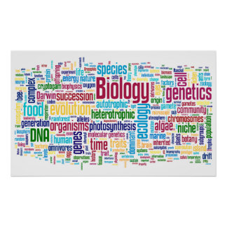 Biologie Wordle Nr. 13 Poster