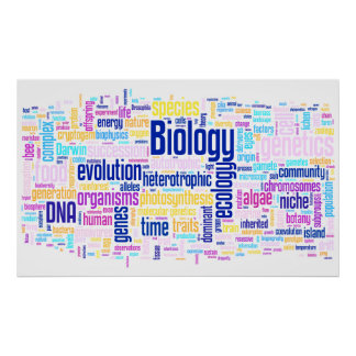 Biologie Wordle Nr. 14 Poster
