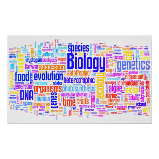Biologie Wordle Nr. 17 Poster