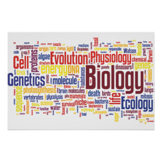 Biologie Wordle Nr. 4 Poster