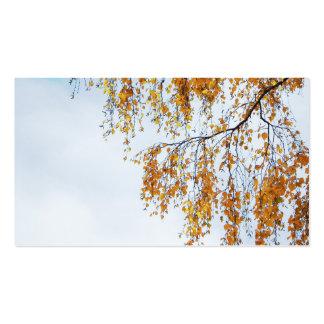 Birch in autumn visitenkartenvorlagen
