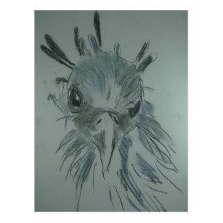 Bird Postkarte