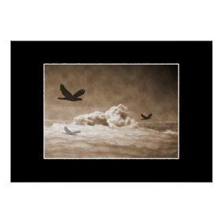 Bird`s above the Clouds Poster