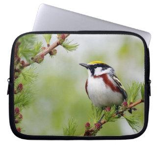 Bird yellow_funda laptopschutzhülle