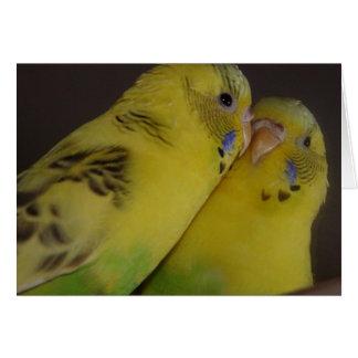 BirdieBird Karte