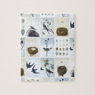 Birds and Nests Puzzle