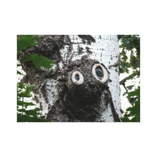 Birken-Baum-magischer Leinwanddruck