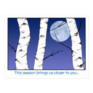 Birken-Mond-Weihnachten Postkarte