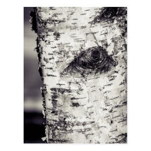 Birkenbaum Postkarte