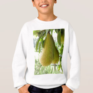 Birnen auf Baumasten Sweatshirt