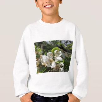 Birnen-Baumaste mit Blüten Sweatshirt