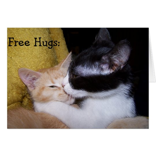 Birthday Card: Sweet Kittens give free Hugs! Karte
