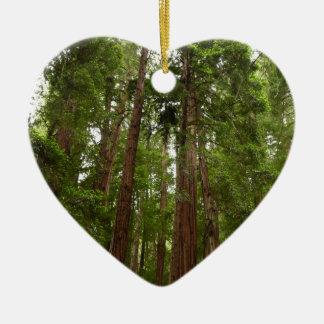 Bis zu den Rothölzern am Muir Holz-nationalen Keramik Ornament