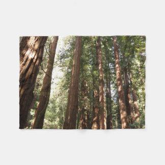 Bis zu den Rothölzern II am Muir Holz-nationalen Fleecedecke