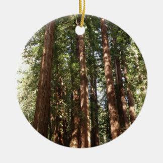 Bis zu den Rothölzern II am Muir Holz-nationalen Keramik Ornament