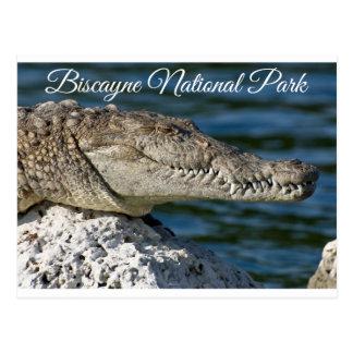 Biscayne Bucht-Park-Miami Beach-Florida-Postkarte Postkarte