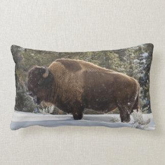 Bison stehend im Schnee Zierkissen
