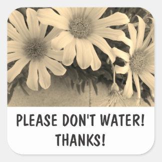 Bitte wässern Sie nicht Aufkleber