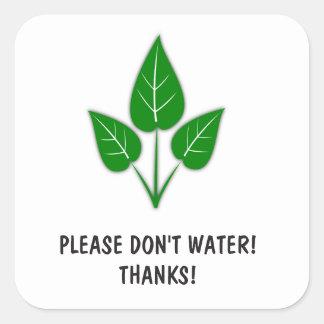 Bitte wässern Sie nicht Aufkleber - Pflanzen