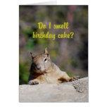 Bitten von Eichhörnchen-alles Gute zum Geburtstag Karten
