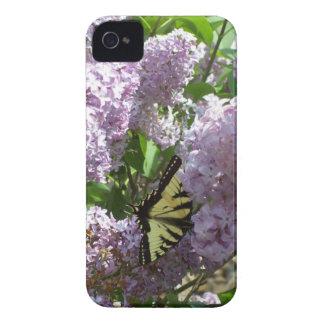 BlackBerry-mutiger Kasten-Schmetterling auf lila iPhone 4 Cover