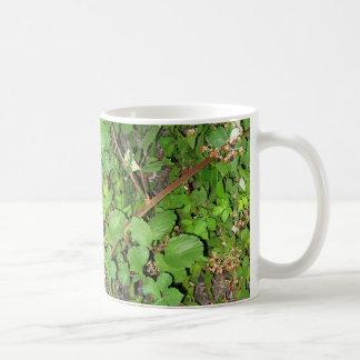 BlackBerryrebebeeren-Blätter-Natur-Foto an Kaffeetasse