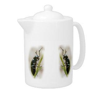 Blasen-Käfer - Meloidae