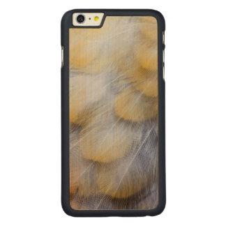 Blasse goldene Drossel-Feder abstrakt Carved® Maple iPhone 6 Plus Hülle