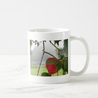Blatt, das roten Fall in Florida dreht Kaffeetasse