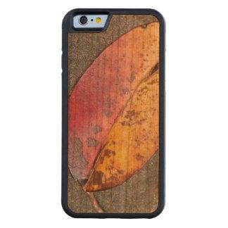 Blatt im Herbst Bumper iPhone 6 Hülle Kirsche