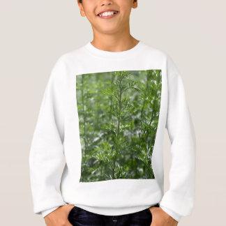 Blätter des Wermuts Sweatshirt