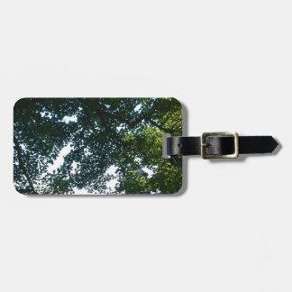 Blätter im Sonnenschein Kofferanhänger