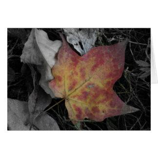 Blätter mit selektiver Farbe Karte