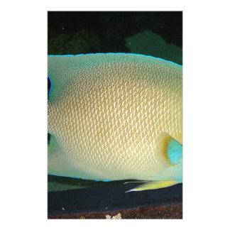 Blau-TAN-Grüne tropische Fisch-Schwimmen im Wasser Personalisierte Büropapiere
