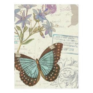 Blau und Brown-Schmetterling Postkarten