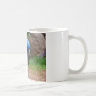 blauaras Papagei Kaffeetasse