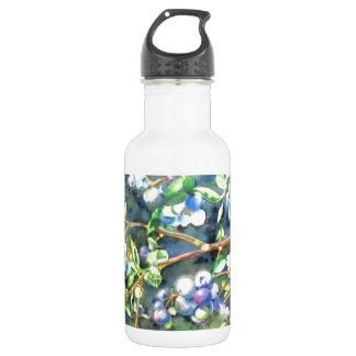 Blaubeeren Edelstahlflasche