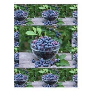 BlaubeerKöche gesunde Cuisine Frühstücks-Salate Postkarte