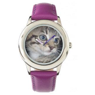 Blaue Augen-flaumiges graues Kätzchen, Armbanduhr