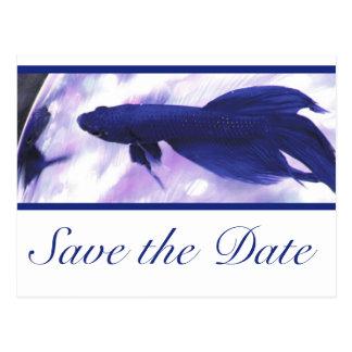 Blaue Betta Fische Save the Date Postkarte