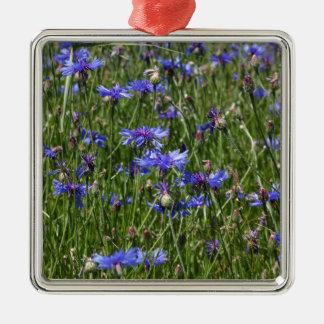 Blaue Cornflowers auf einem Gebiet Quadratisches Silberfarbenes Ornament